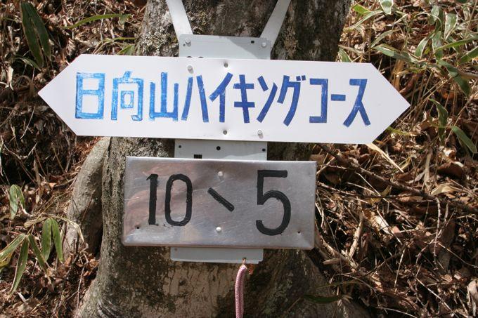 Img_6991